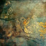 Fine Art Photographic Print by French photographer and artist Anne Solfud