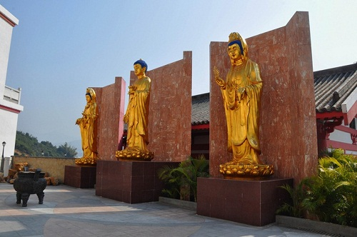 Ten Thousand Buddha Garden
