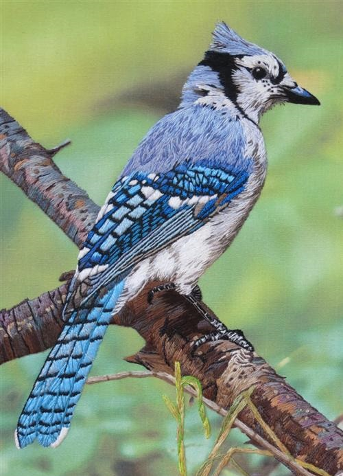 A blue Jay. Embroidery by Elza, South Africa