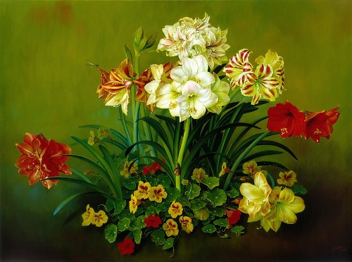 Amaryllis a Christmas Celebration. Still life painting by Jose Escofet