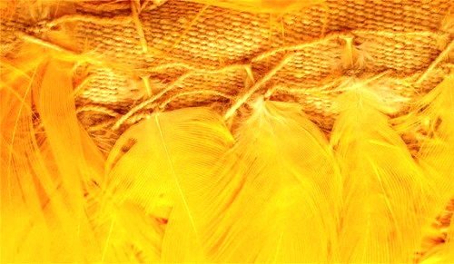 Ancient Peru feather art. Detail of the feathered-string knotting for all-yellow panel