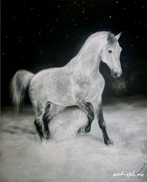 Grey on the snow, Pastel on paper. Painting by Russian artist animalist Yuliya Dubinina