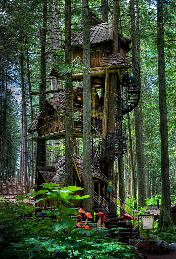 Magic three-storey house, built on a tree in British Columbia, Canada