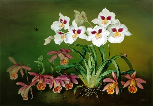 Orchids, oil on canvas, 2000. Still life painting by Jose Escofet