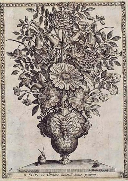 Antique botanical drawings with moralizing instructions