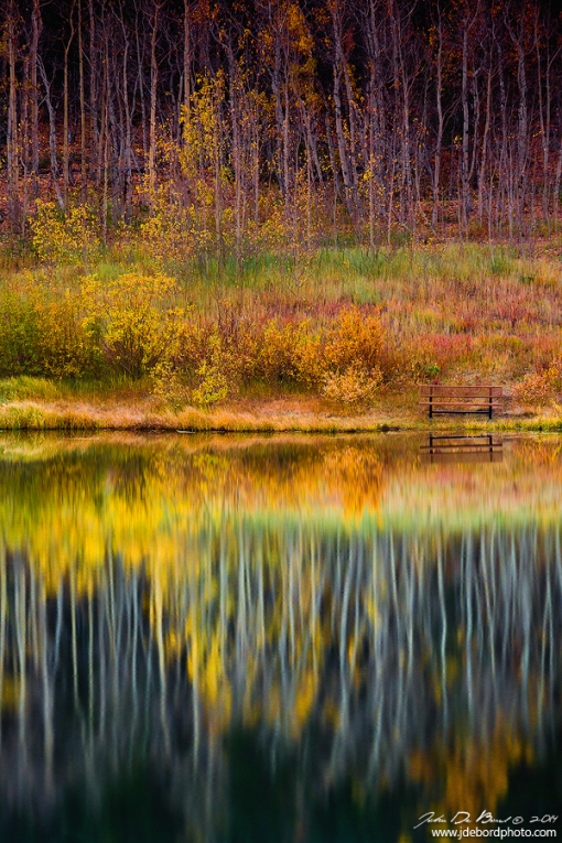 Autumn Secrets. American photographer John De Bord