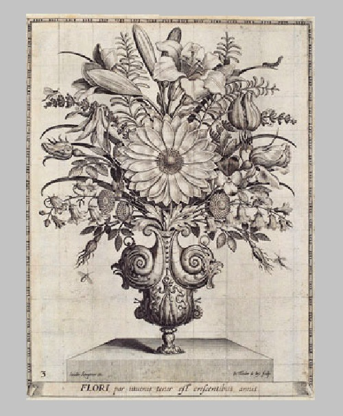 botanical drawings with moralizing instructions