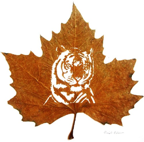 Leaf cutting art by Omid Asadi