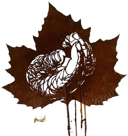 Leaf cutting art by Iranian artist Omid Asadi