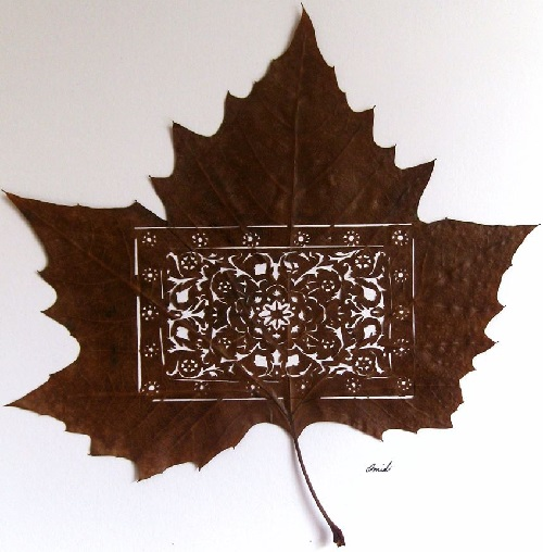 Persian Rug on Leaf. Leaf cutting art by Iranian artist Omid Asadi