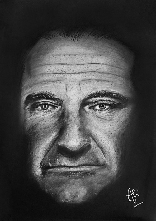 Robin Williams pencil drawings by Eemran