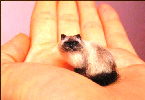 Seal-point Himalayan cat. Miniature Wildlife sculpture by British artist Anya Stone