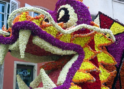 dragon's head. Floral sculpture Parade Corso Fleur