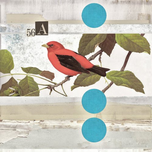 Scarlet tanager. Digital collages by Robert Alan