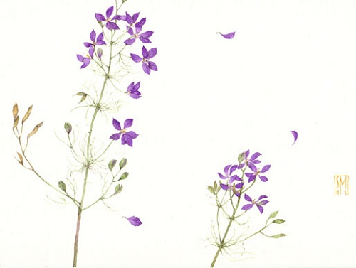 Delicate splendor and minimalism of watercolors by Italian artist Silvia Molinari