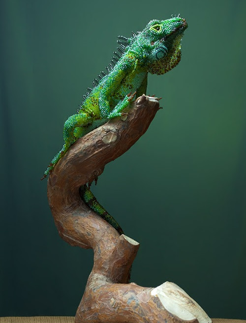 Green Iguana (dragon). Realistic beaded sculpture by Belarusian artist Zhanna Vasilyeva