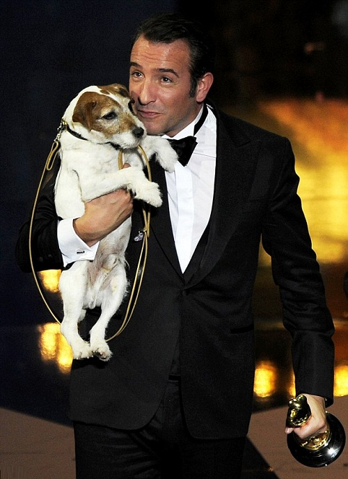 On 13 February 2012, was named Best Dog in a Theatrical Film at the first Golden Collar Awards, awarded by Dog News Daily