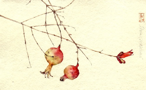 Watercolor painting by Italian artist Silvia Molinari