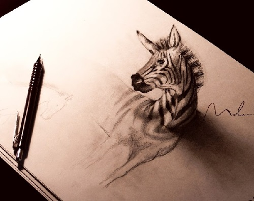 Zebra. Three dimensional pencil drawing by Syrian artist Muhammad Ejleh