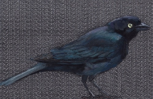 Blackbird on Black Gouache. Birds on found paper by Paula Swisher