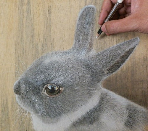 Bunny. pastel on wood. drawing by Singaporean Hyperrealist artist Ivan Hoo