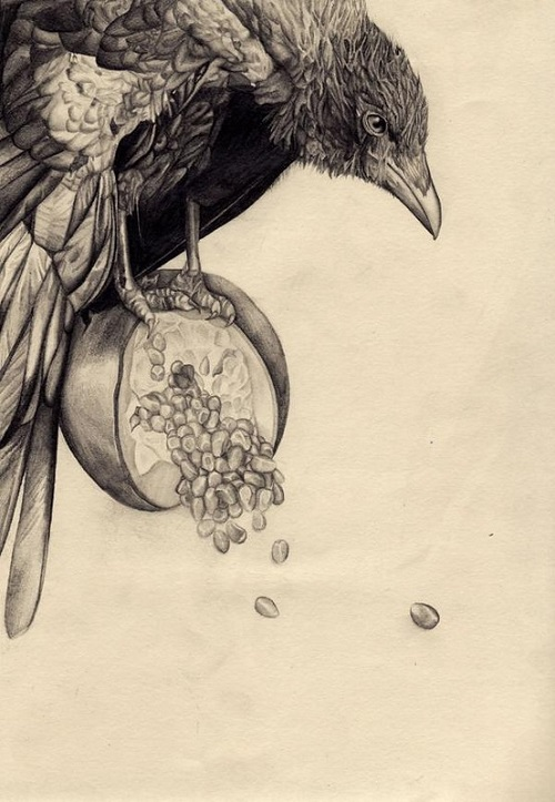 Illustration by British artist Amy Dover