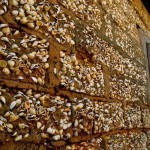 Shells in Joal-Fadiut are used in construction and exterior finish of buildings, they lined the streets