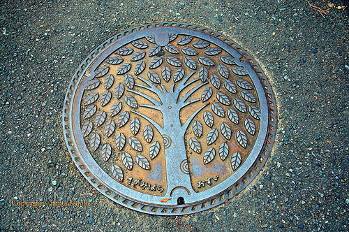 Tree of life. Manhole covers Art