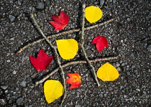 A fun game of Tic-Tac-Toe made from sticks and brightly colored leaves. American fine art nature photographer Christina Rollo