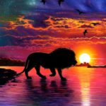 A lion at night