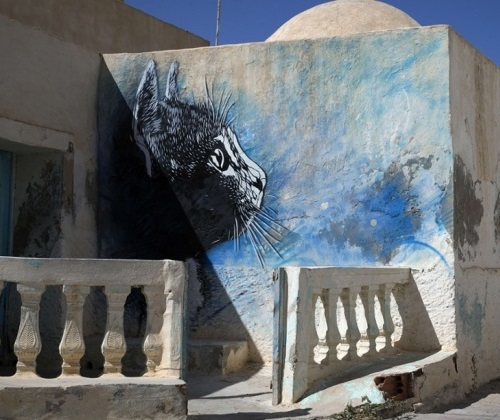 Erriadh Open-Air Street Art museum, Tunisia. Street artist C215, France