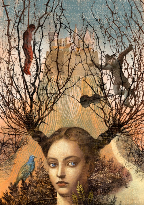 Among the Thorns, Tor Books. Illustrators Anna and Elena Balbusso