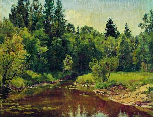 Forest river, 1909