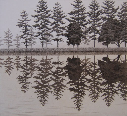 Reflection. Hyperrealistic etching by Japanese artist Tanaka Ryohei