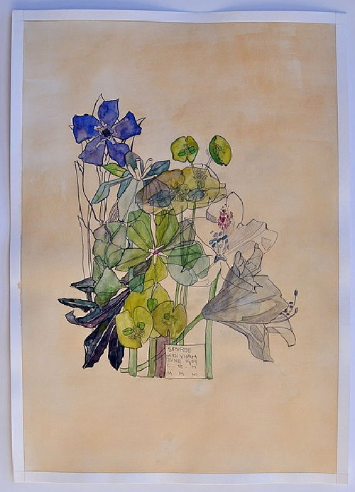 Spurge. Charles Rennie Mackintosh. Copy. Painting by Elina Forget-me-not