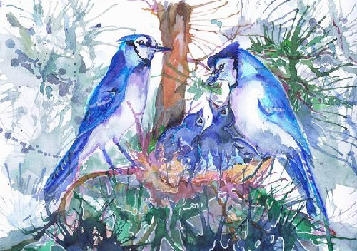 blue jays family. ValrArt watercolor portraits
