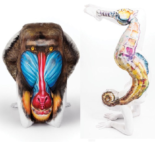 Mandrill and Seahorse. Body painting by British artist Emma Fay