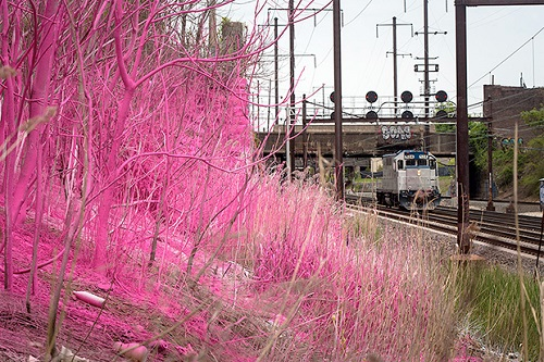 2014 in art. Katharina Grosse transforms the landscape of Philadelphia, painting in bright colors trees along railroad