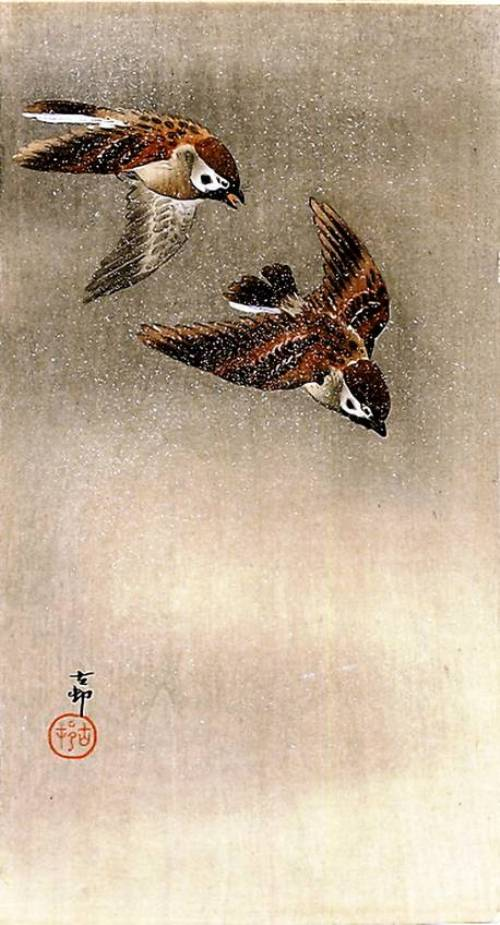 Two sparrows. Woodblock print by Ohara Koson