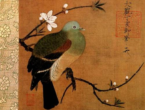 Zhao Ji, Hueytszun. The Dove