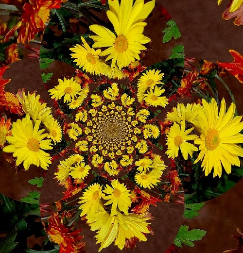 Autumn twisting. Flower kaleidoscope by Anatoly Vostochny