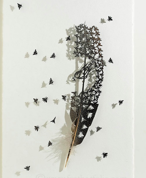 Feather cutting art by Chris Maynard