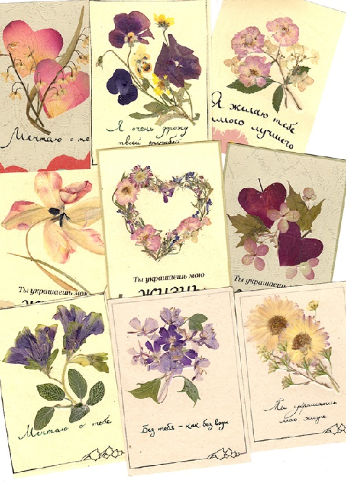Floral horoscope. Art by Lyudmila Solod