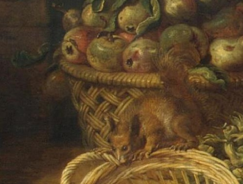 Renaissance still life code. Squirrel