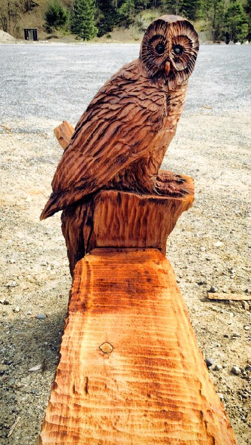 Barred Owl Bench