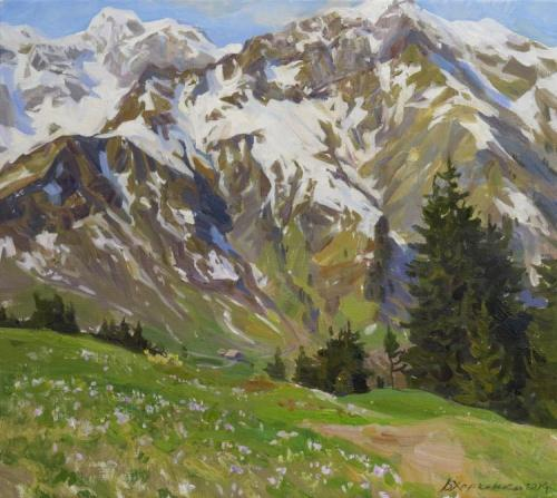 Crocuses at the mountains Hochberg