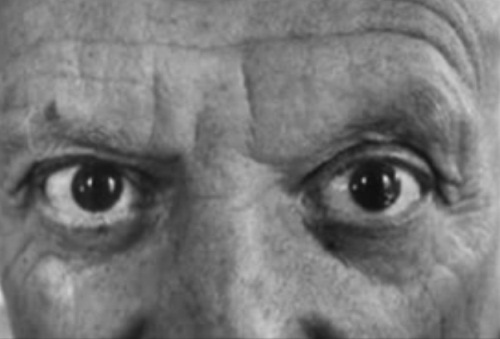 Large round eyes of owl reminded Picasso his own