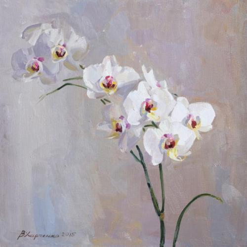 white Orchid. Oil on canvas. Painting by Russian artist Viktoria Kharchenko
