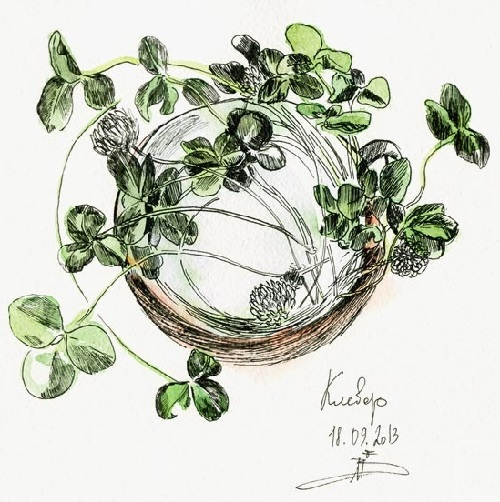 September clover. Paper, coffee, watercolor, liners. 2013. Painting by Maria Skorodumova