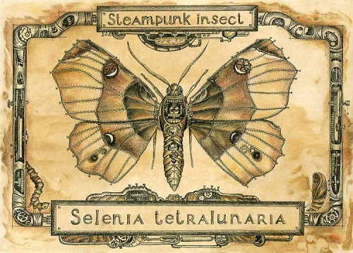 Steampunk butterfly. Paper, coffee, gel pen, colored pencils. Coffee improvisations by Maria Skorodumova